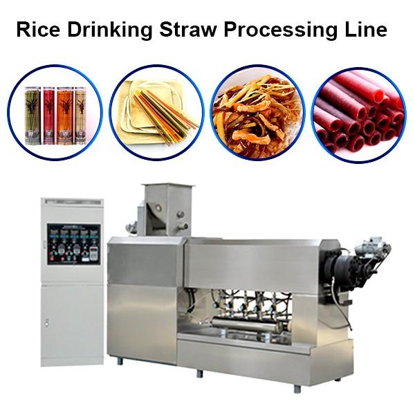 Hot Sale Stainless Steel Food Grade Spaghetti Macaroni Making Production Line Pasta Machine #1 image