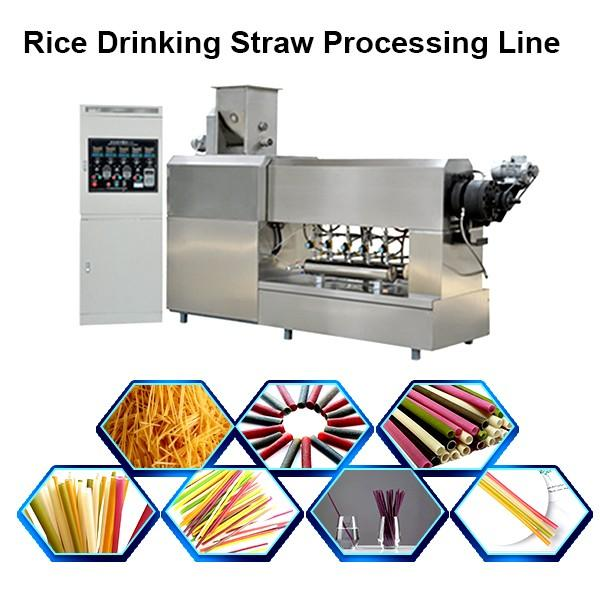 Stainless Steel Twin-Screw Extruder Eco-Friendly Factory Supply Pasta Straw Making Machine Degradable Straw Machine #1 image