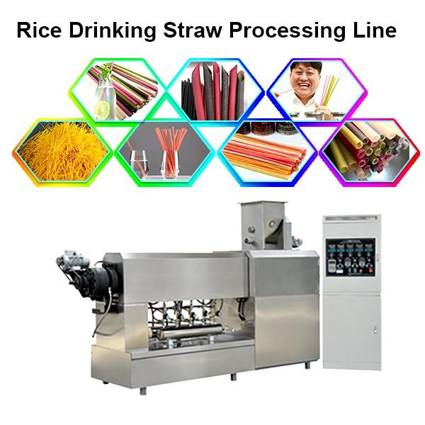 Biodegradable PLA drinking straw making extruder/straw machine #1 image