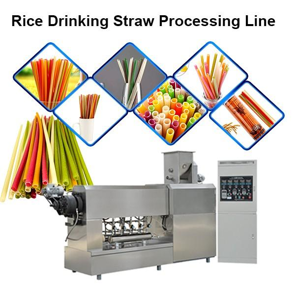 Biodegradable drinking craft pipe Straw Extrusion Making Machine pipe extruder,extrusion line #1 image