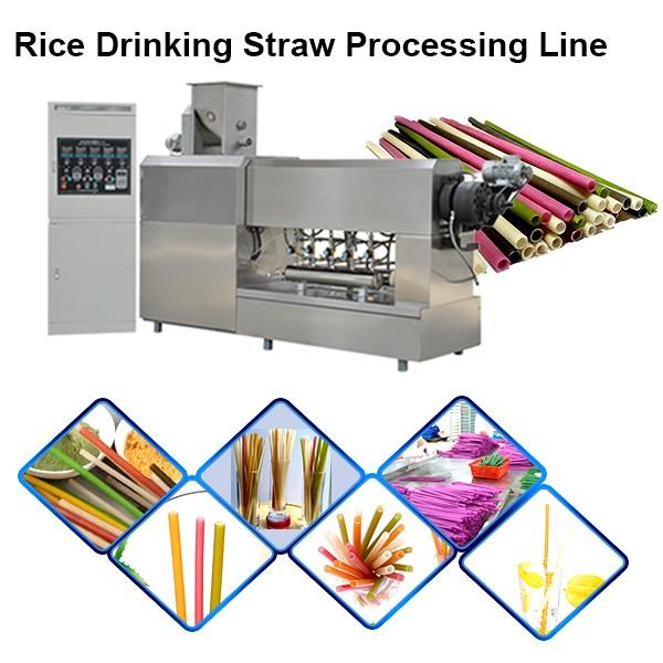 New Material Edible Straws Biodegradable Rice Tapioca Straw Making Machine #1 image