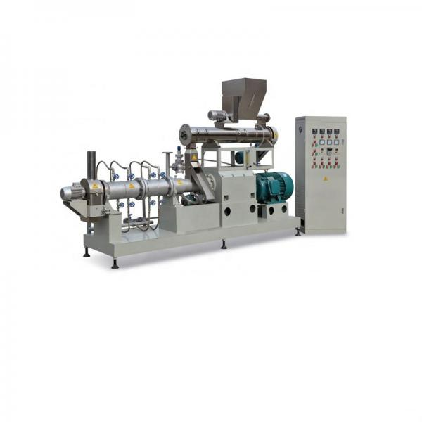 Automatic Floating Fish Feed Pelleting Extruder Fish Feed Dry Extruder Machine #1 image