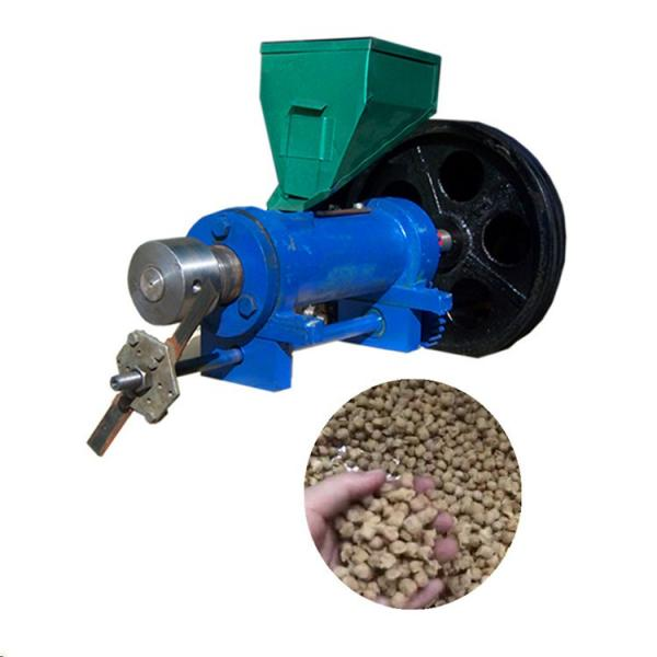 China Large Capacity Twin Screw Extruder Pet Food Processing Floating Fish Feed Pellet Machine #1 image