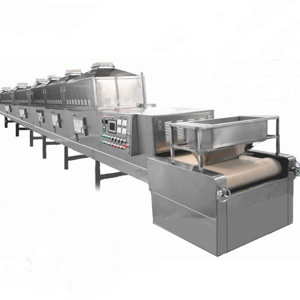 Industrial Tunnel Microwave Drying and Curing Equipment Sterilization Machine #1 image