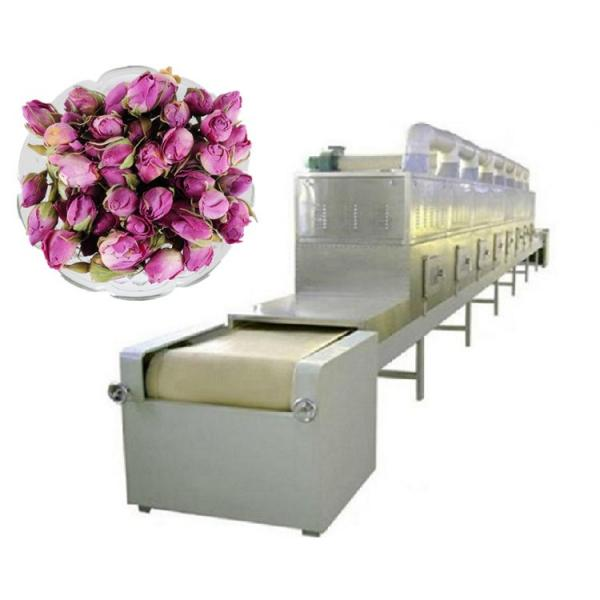 Factory Directly Tunnel Dryer Hot Air Tunnel Conveyor Dryer Equipment #2 image