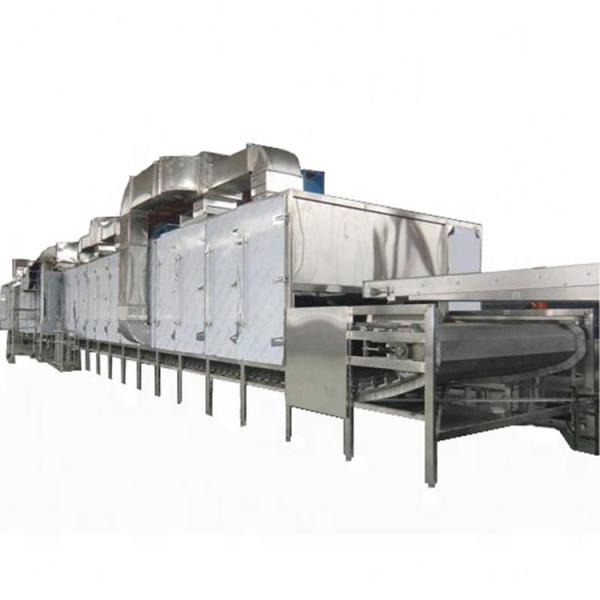 Factory Directly Tunnel Dryer Hot Air Tunnel Conveyor Dryer Equipment #1 image